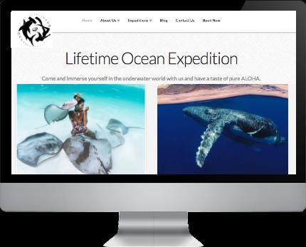 online shop maui web design